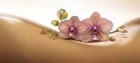 Lipotransfer ist neuer Beautytrend