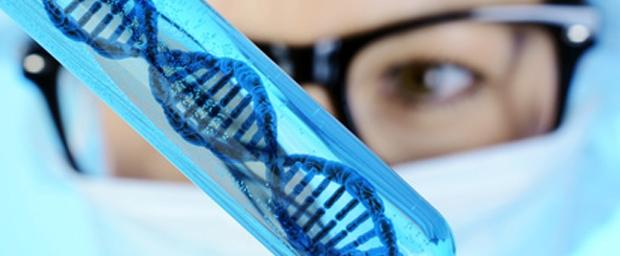 Stammzellen in der ästhetischen Medizin