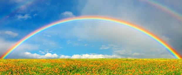 Wohlbefinden und Schönheit durch Synton-Farblicht